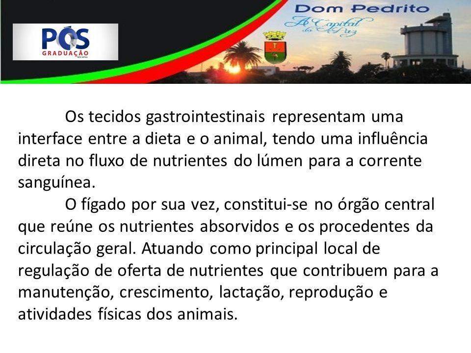 Os tecidos gastrointestinais representam uma interface entre a dieta e o animal, tendo uma influência direta no fluxo de nutrientes do lúmen para a corrente sanguínea.