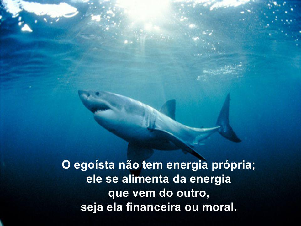 O egoísta não tem energia própria; ele se alimenta da energia que vem do outro, seja ela financeira ou moral.