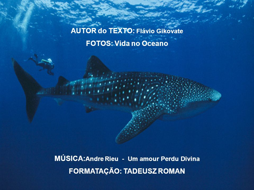 MÚSICA:Andre Rieu - Um amour Perdu Divina FORMATAÇÃO: TADEUSZ ROMAN