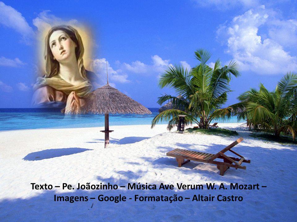 Texto – Pe. Joãozinho – Música Ave Verum W. A. Mozart –
