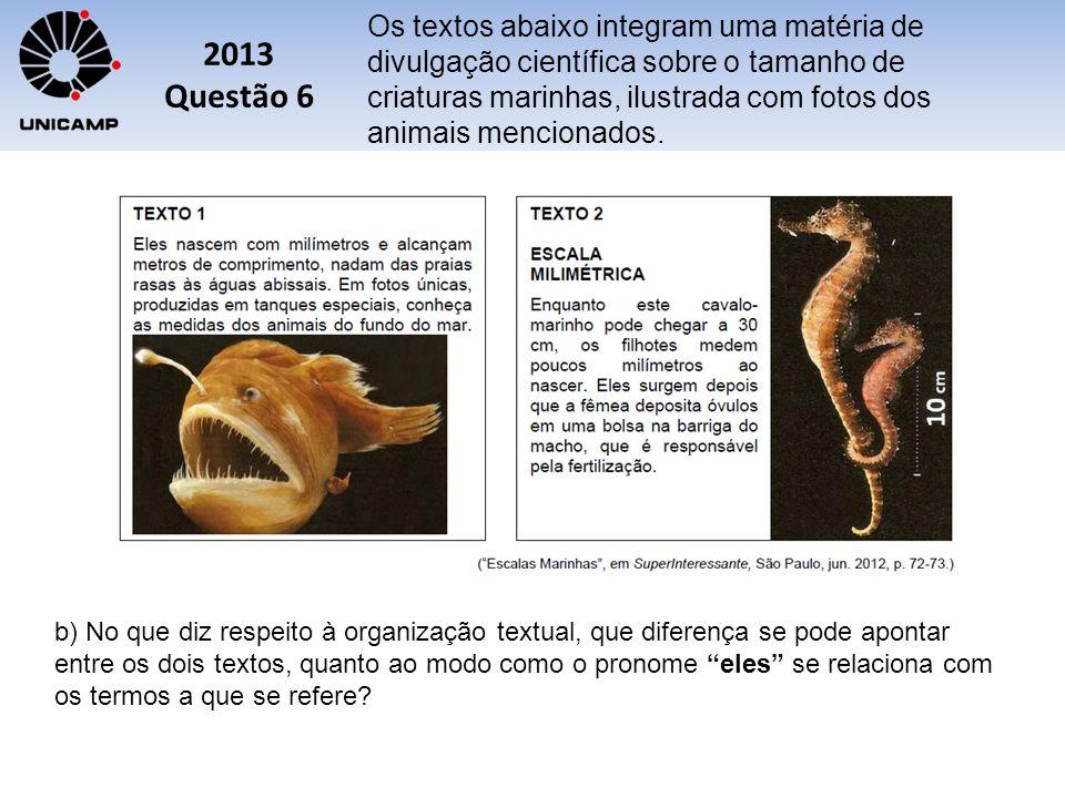 Os textos abaixo integram uma matéria de divulgação científica sobre o tamanho de criaturas marinhas, ilustrada com fotos dos animais mencionados.