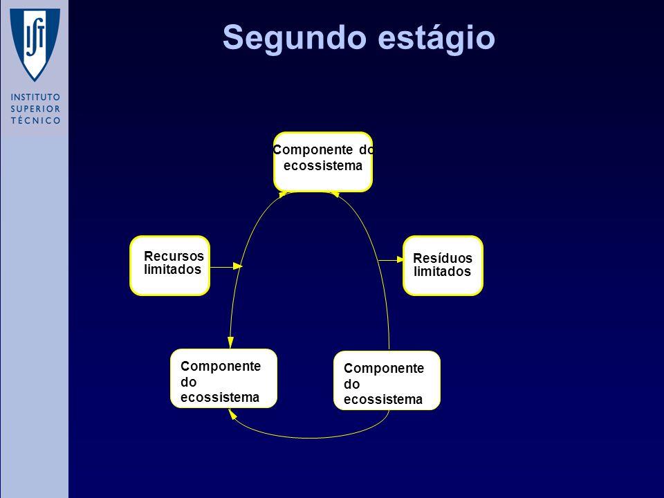 Segundo estágio Componente do ecossistema Resíduos Recursos limitados