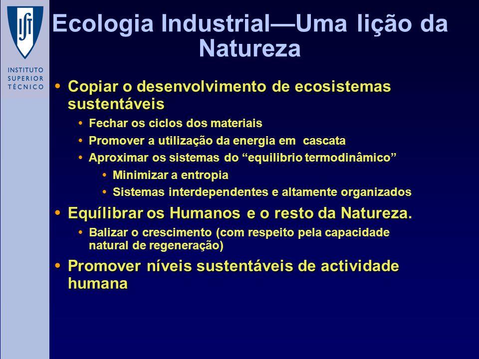 Ecologia Industrial—Uma lição da Natureza