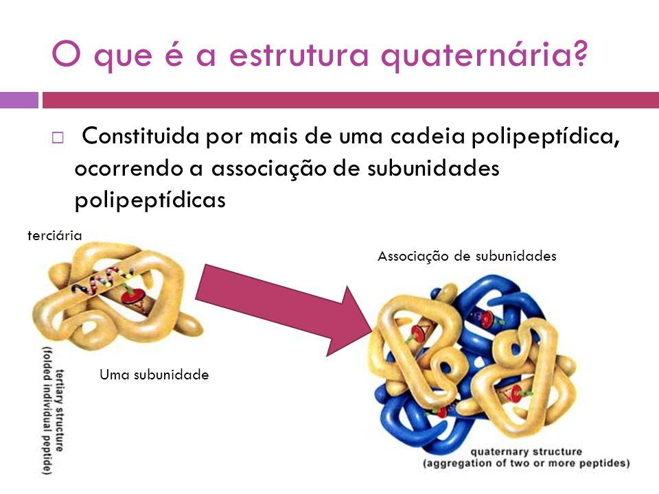 O que é a estrutura quaternária