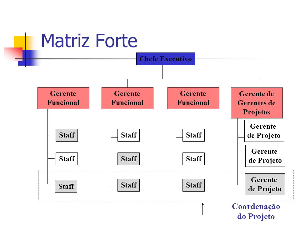 Gerente de Gerentes de Projetos Coordenação do Projeto
