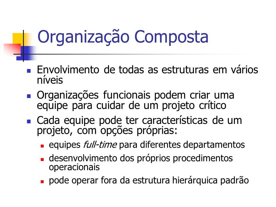 Organização Composta Envolvimento de todas as estruturas em vários níveis.