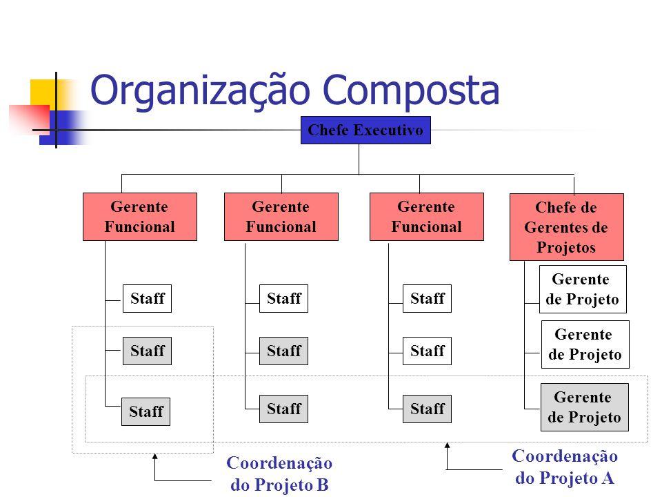 Organização Composta Coordenação do Projeto A Coordenação do Projeto B