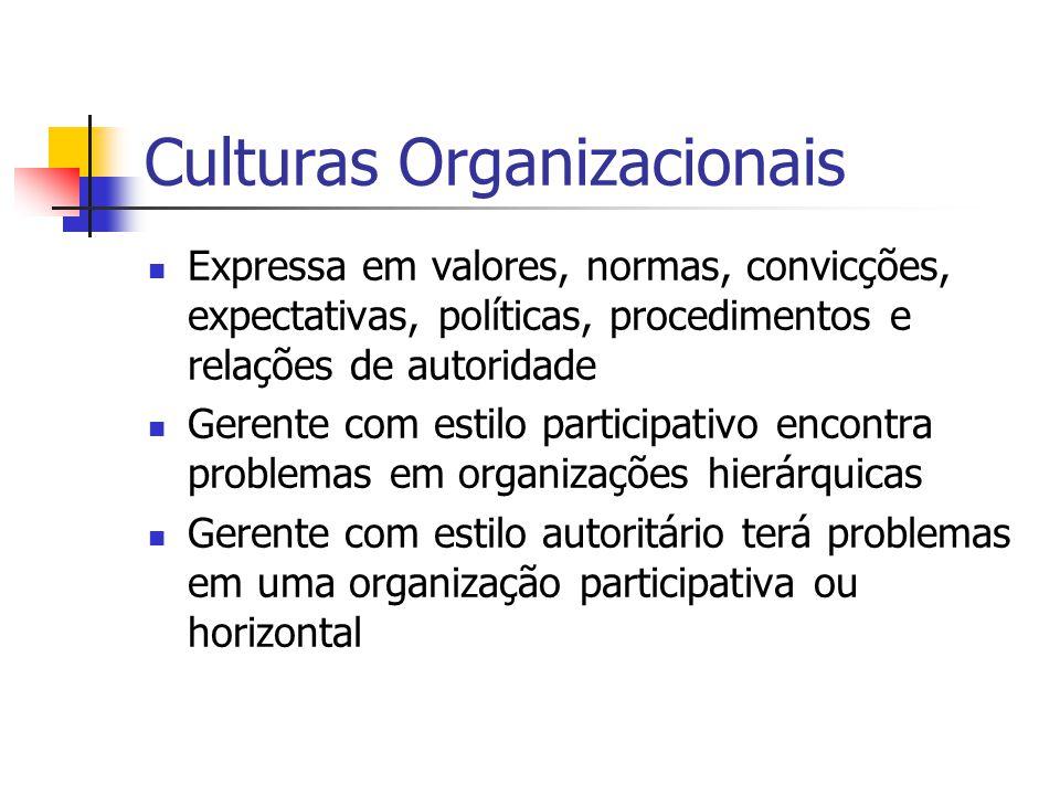 Culturas Organizacionais
