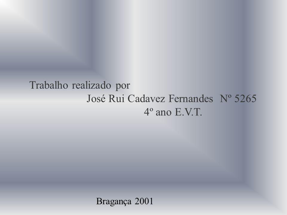 José Rui Cadavez Fernandes Nº 5265 4º ano E.V.T.