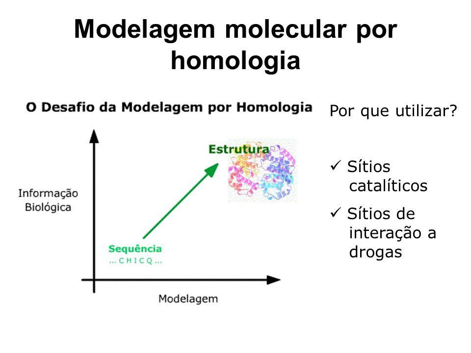 Modelagem molecular por homologia
