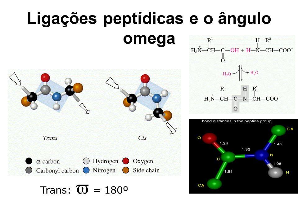 Ligações peptídicas e o ângulo omega