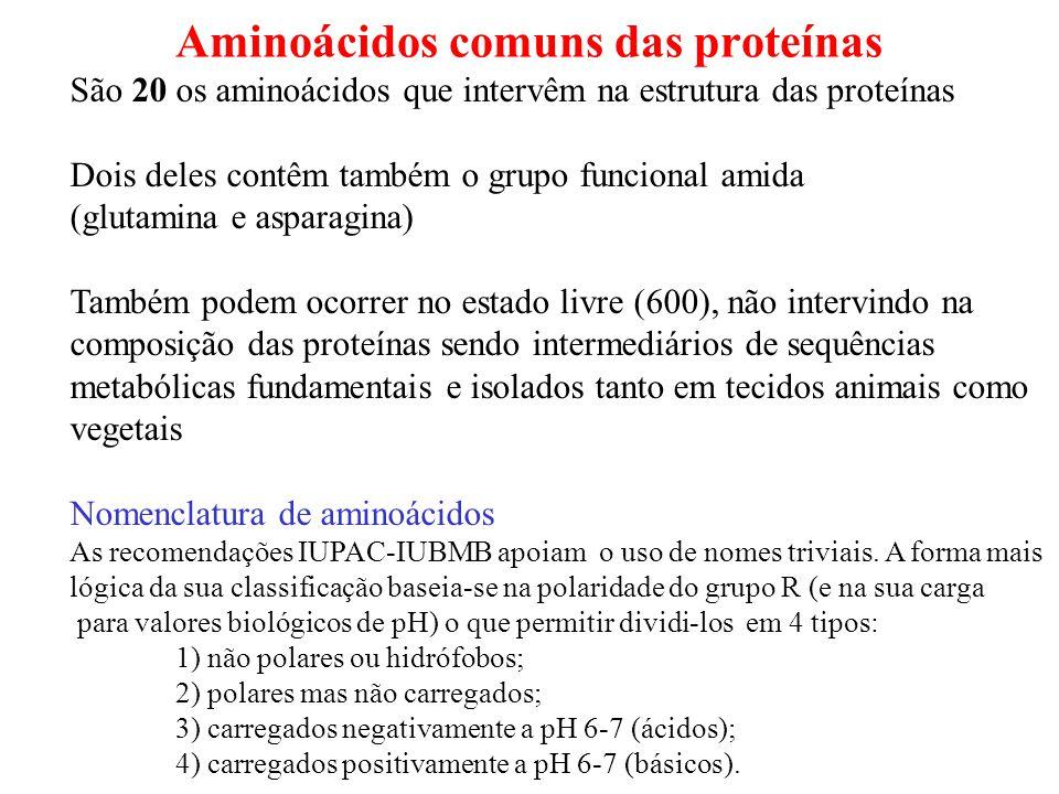Aminoácidos comuns das proteínas