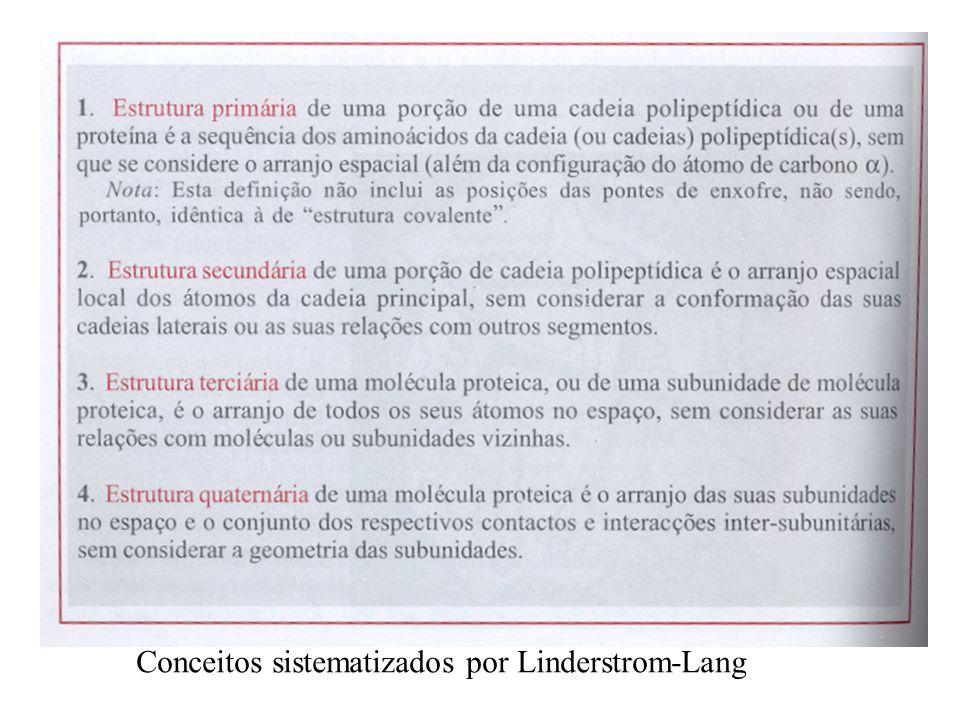 Conceitos sistematizados por Linderstrom-Lang