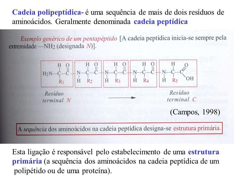 Cadeia polipeptídica- é uma sequência de mais de dois resíduos de