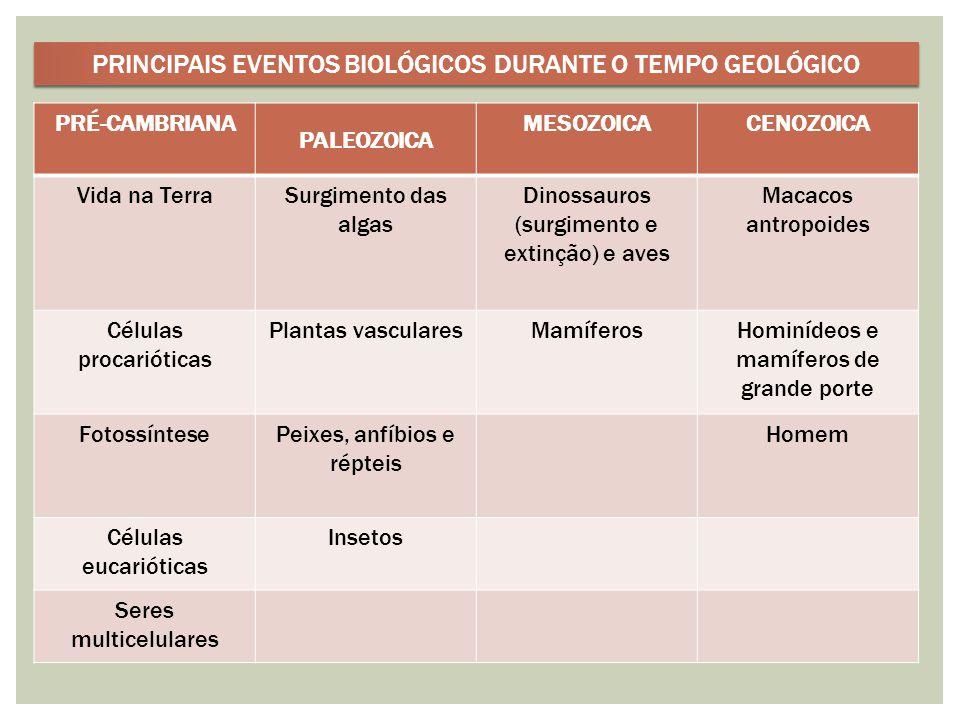 PRINCIPAIS EVENTOS BIOLÓGICOS DURANTE O TEMPO GEOLÓGICO