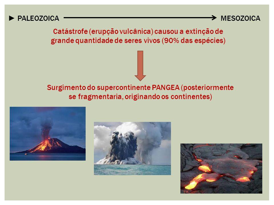 ► PALEOZOICA MESOZOICA