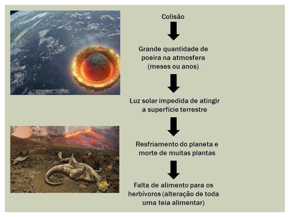 Grande quantidade de poeira na atmosfera (meses ou anos)