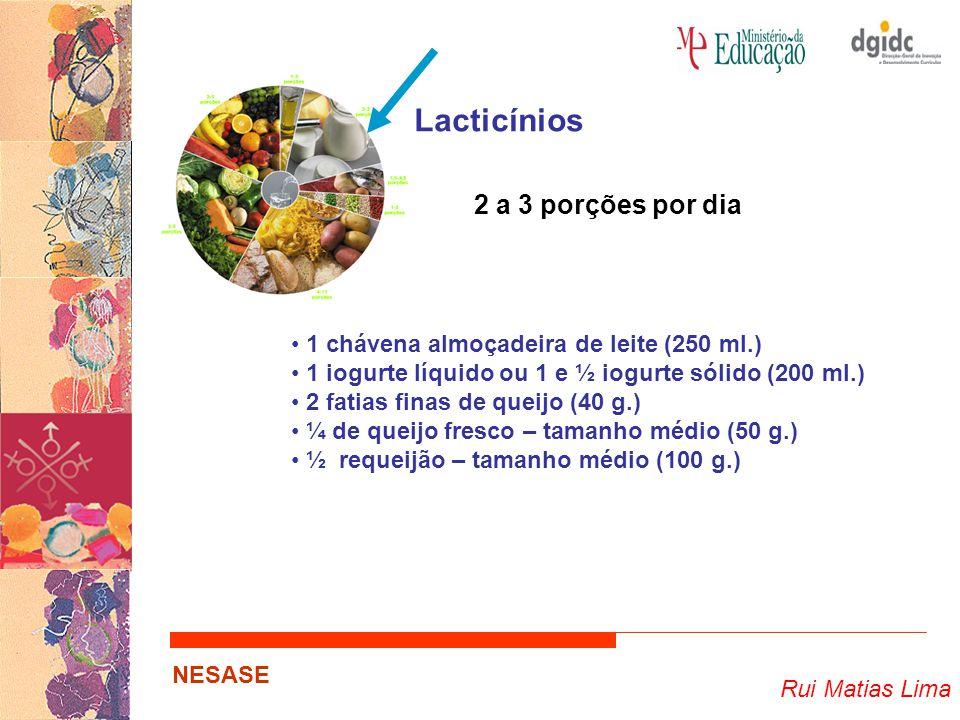 Lacticínios 2 a 3 porções por dia