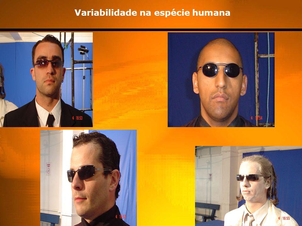 Variabilidade na espécie humana
