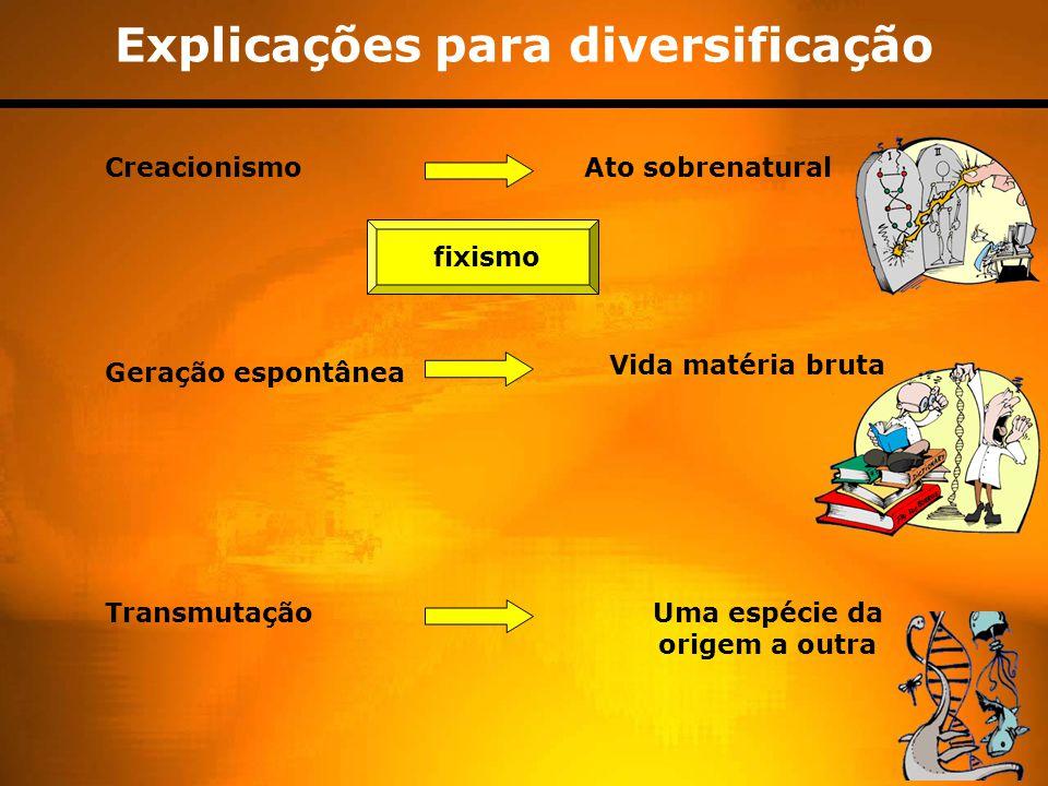 Explicações para diversificação Uma espécie da origem a outra