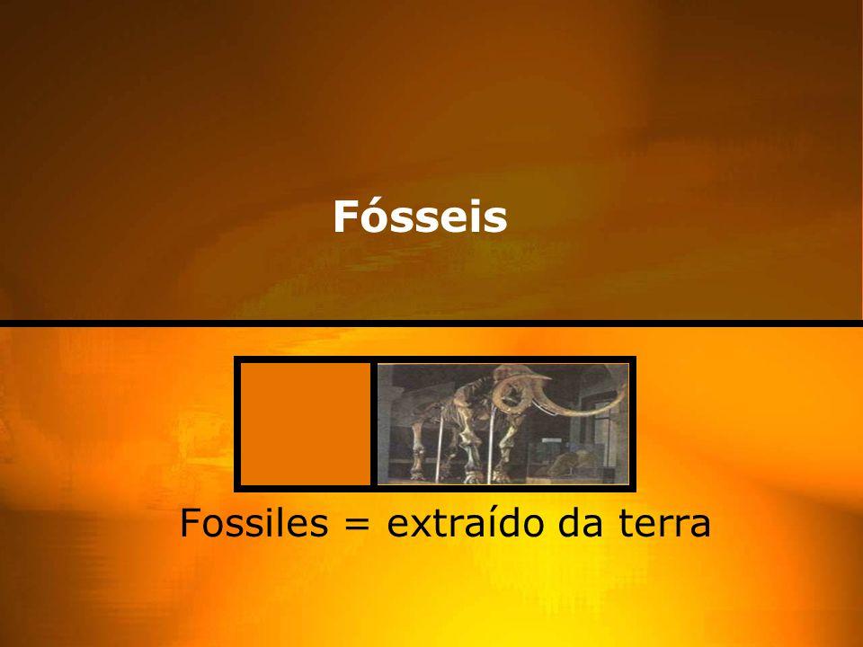 Fossiles = extraído da terra