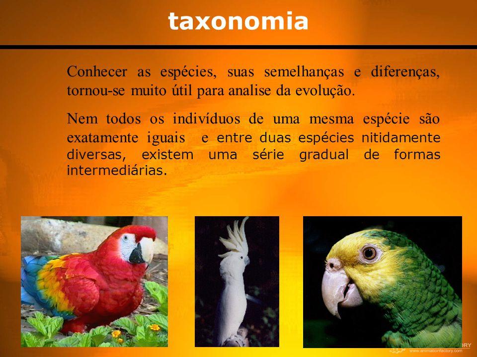 taxonomia Conhecer as espécies, suas semelhanças e diferenças, tornou-se muito útil para analise da evolução.