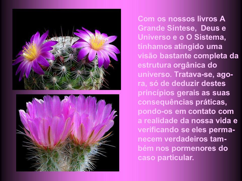 Com os nossos livros A Grande Síntese, Deus e Universo e o O Sistema, tínhamos atingido uma visão bastante completa da estrutura orgânica do universo.