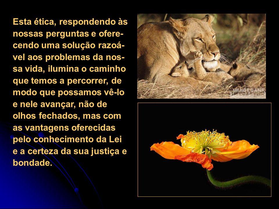 Esta ética, respondendo às nossas perguntas e ofere-cendo uma solução razoá-vel aos problemas da nos-sa vida, ilumina o caminho que temos a percorrer, de modo que possamos vê-lo e nele avançar, não de olhos fechados, mas com as vantagens oferecidas pelo conhecimento da Lei e a certeza da sua justiça e bondade.