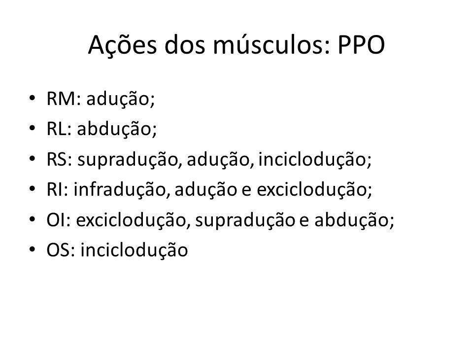 Ações dos músculos: PPO