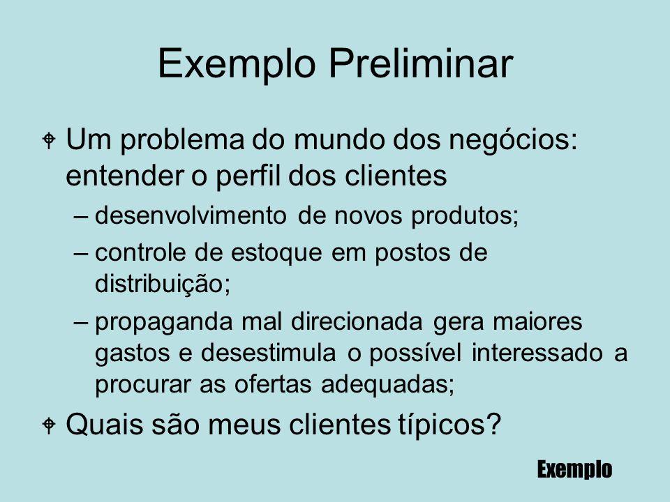Exemplo Preliminar Um problema do mundo dos negócios: entender o perfil dos clientes. desenvolvimento de novos produtos;