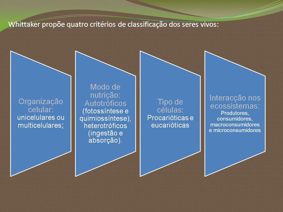 Whittaker propõe quatro critérios de classificação dos seres vivos: