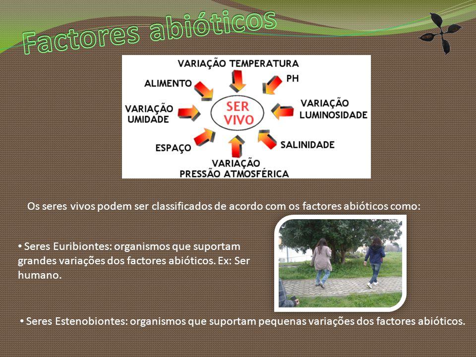 Factores abióticos Os seres vivos podem ser classificados de acordo com os factores abióticos como: