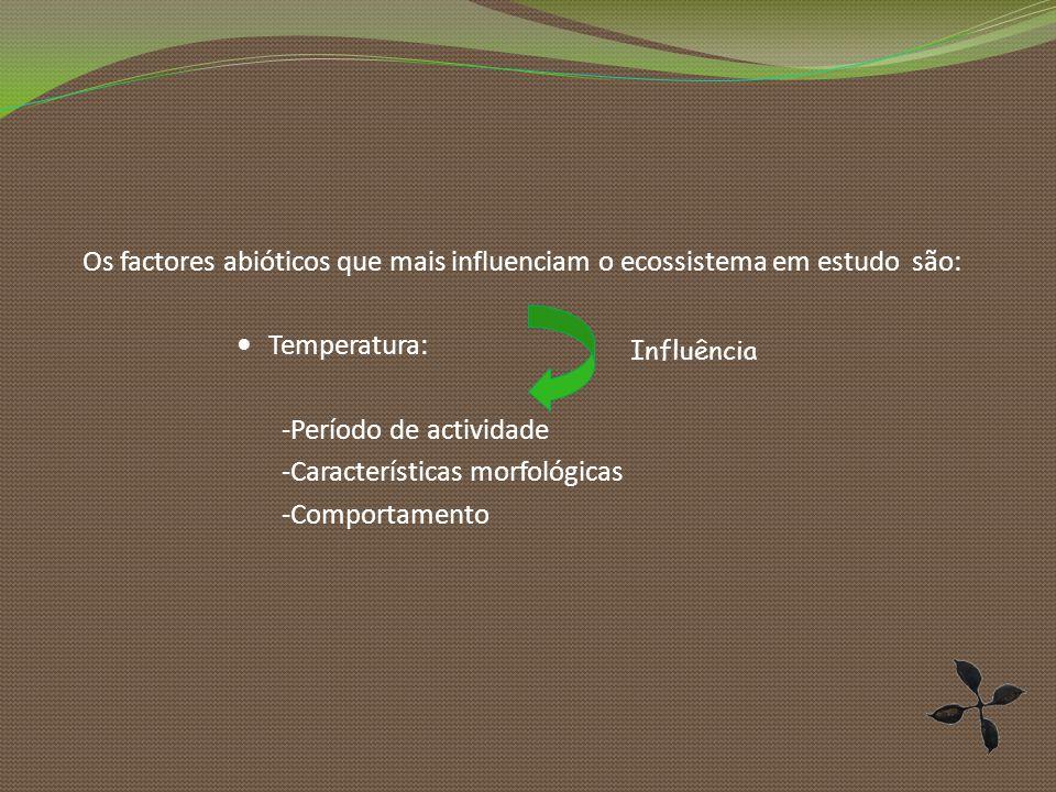 -Período de actividade -Características morfológicas -Comportamento