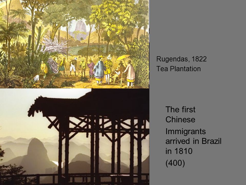 Immigrants arrived in Brazil in 1810