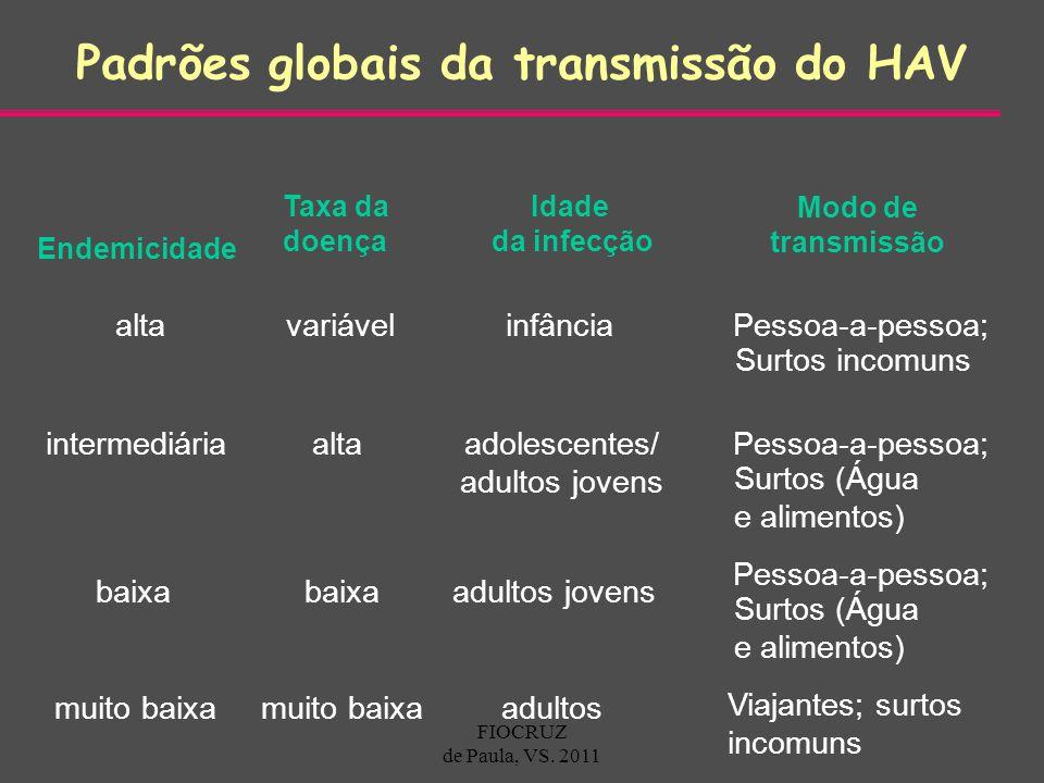 Padrões globais da transmissão do HAV