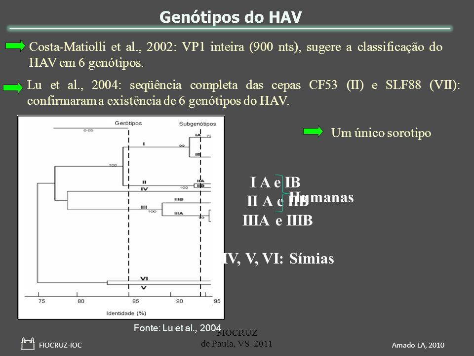 Genótipos do HAV I A e IB II A e IIB Humanas IIIA e IIIB