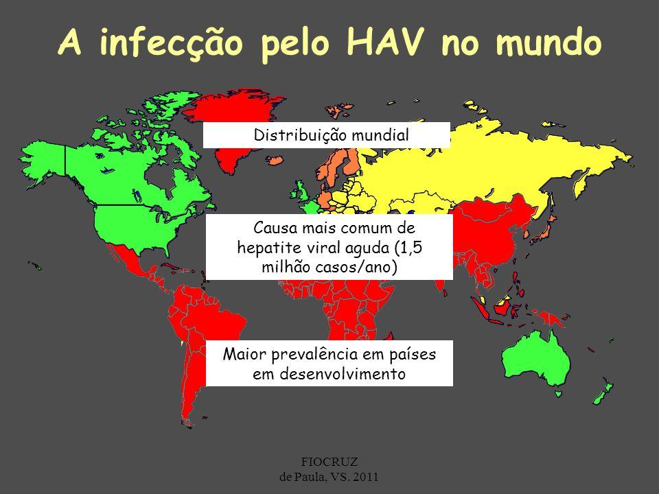 A infecção pelo HAV no mundo