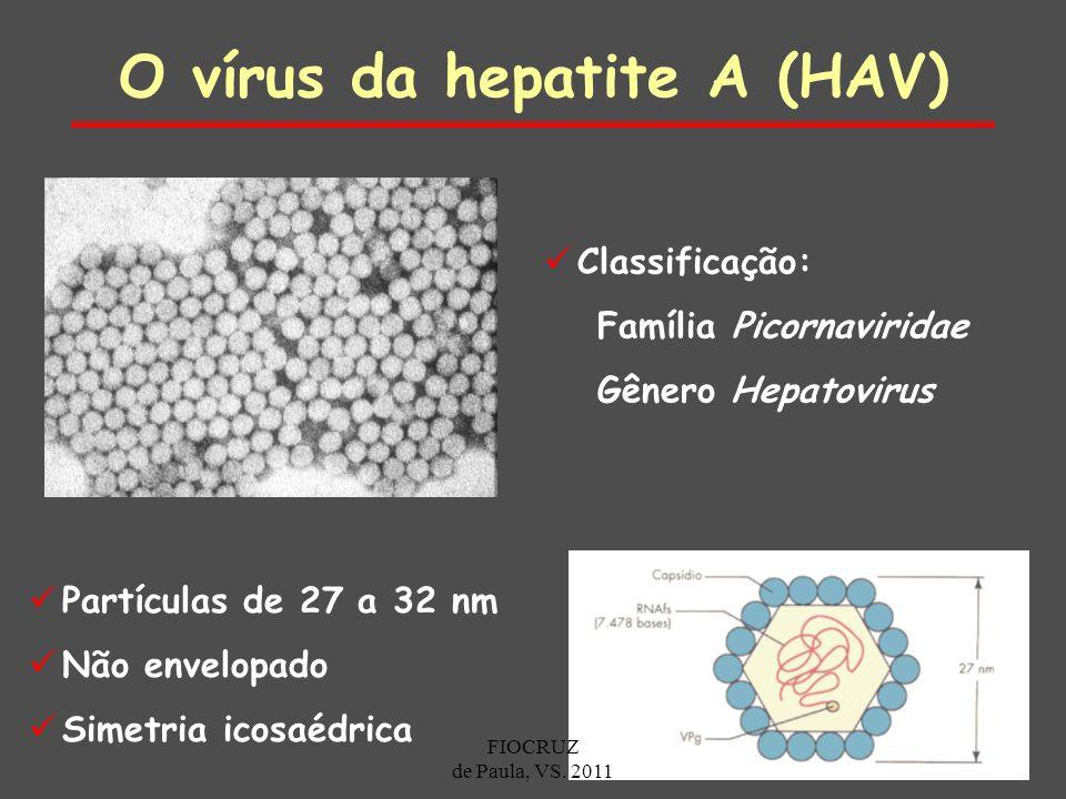 O vírus da hepatite A (HAV)