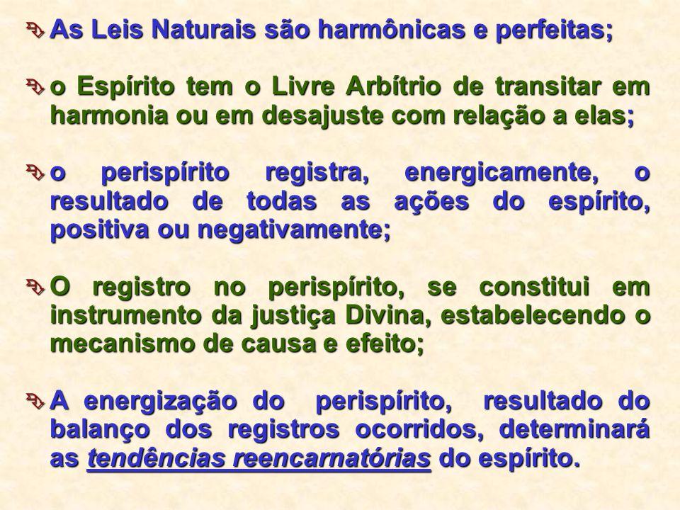 As Leis Naturais são harmônicas e perfeitas;