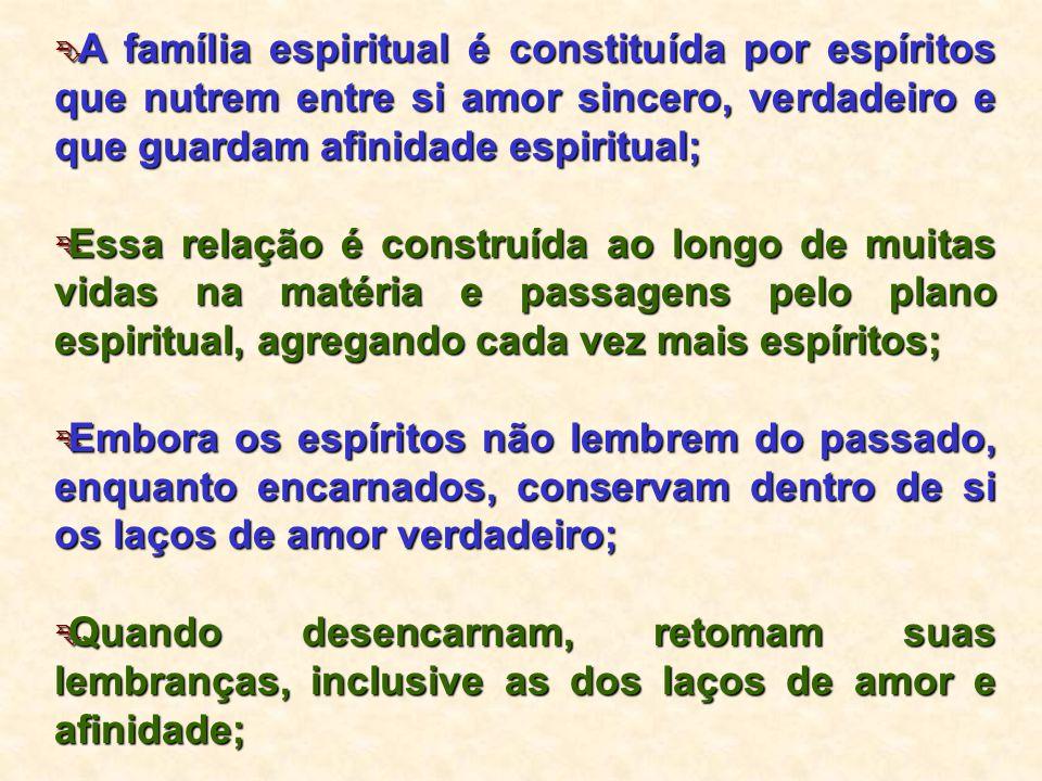 A família espiritual é constituída por espíritos que nutrem entre si amor sincero, verdadeiro e que guardam afinidade espiritual;