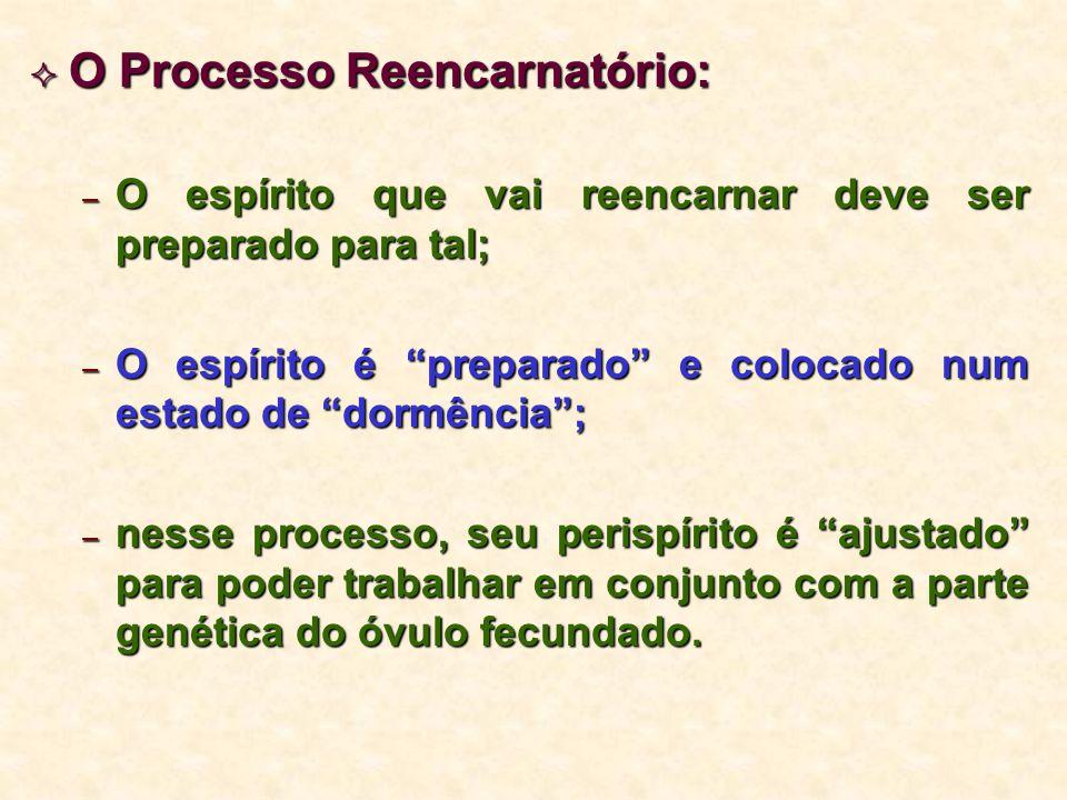 O Processo Reencarnatório: