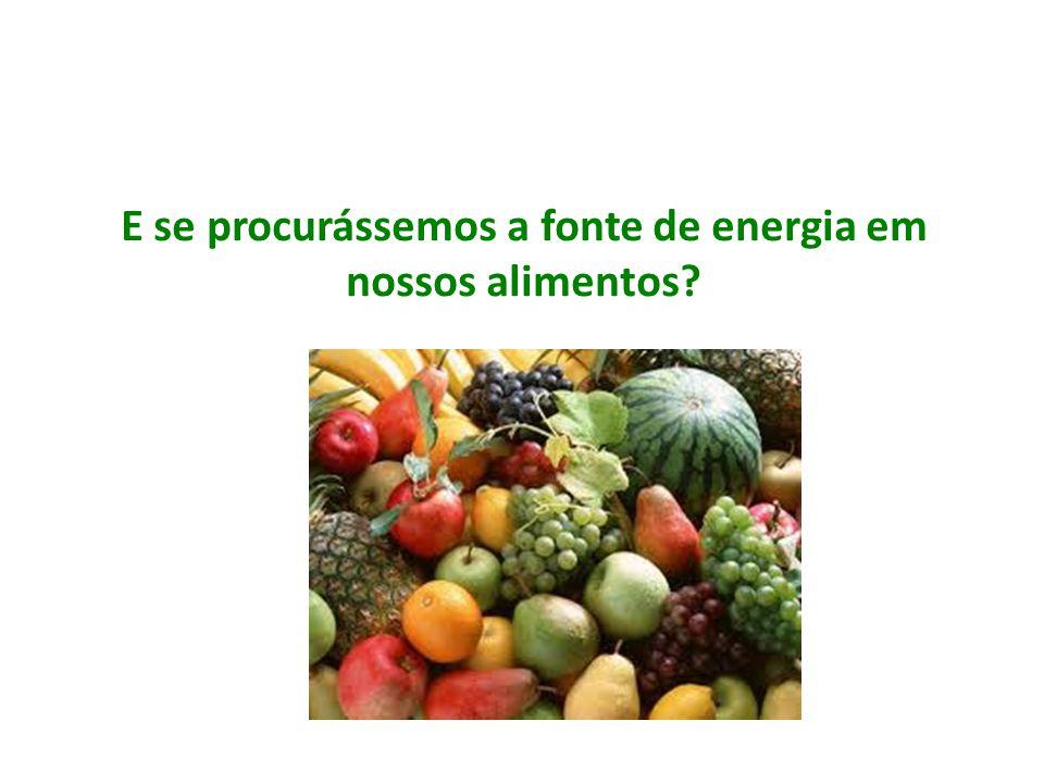 E se procurássemos a fonte de energia em nossos alimentos