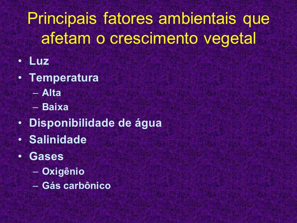 Principais fatores ambientais que afetam o crescimento vegetal