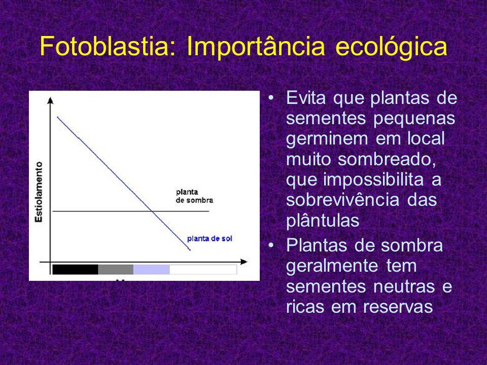 Fotoblastia: Importância ecológica