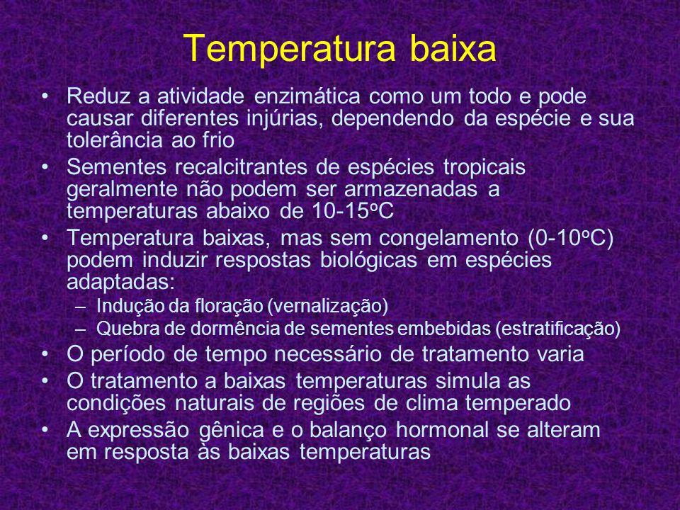 Temperatura baixa Reduz a atividade enzimática como um todo e pode causar diferentes injúrias, dependendo da espécie e sua tolerância ao frio.
