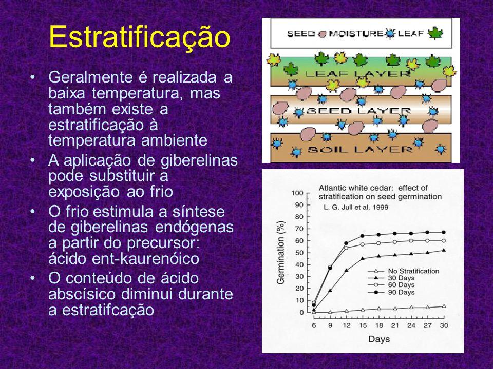Estratificação Geralmente é realizada a baixa temperatura, mas também existe a estratificação à temperatura ambiente.