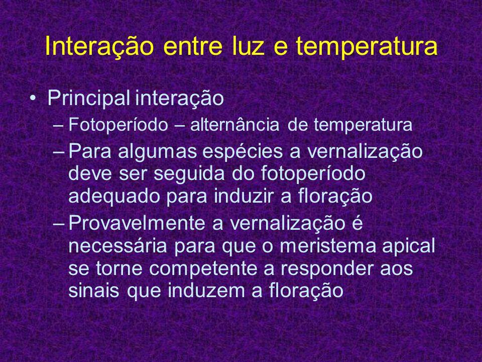 Interação entre luz e temperatura