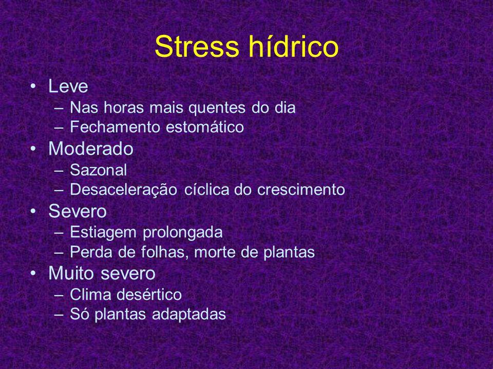 Stress hídrico Leve Moderado Severo Muito severo