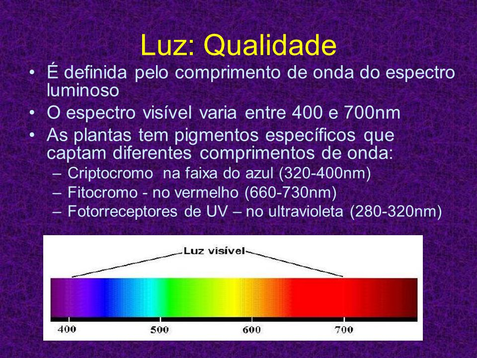 Luz: Qualidade É definida pelo comprimento de onda do espectro luminoso. O espectro visível varia entre 400 e 700nm.