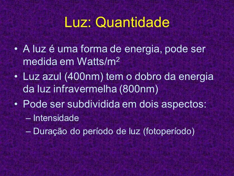 Luz: Quantidade A luz é uma forma de energia, pode ser medida em Watts/m2. Luz azul (400nm) tem o dobro da energia da luz infravermelha (800nm)
